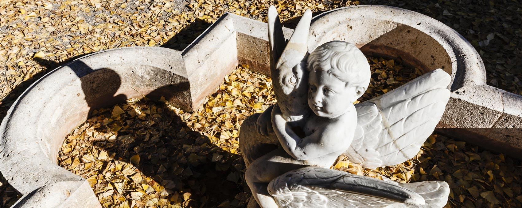 Situada en la zona oeste del Jardín Romántico encontramos esta pequeña alberca en forma de cruz griega presidida por una fuente compuesta por la figura de un Niño Cabalgando sobre un Cisne.