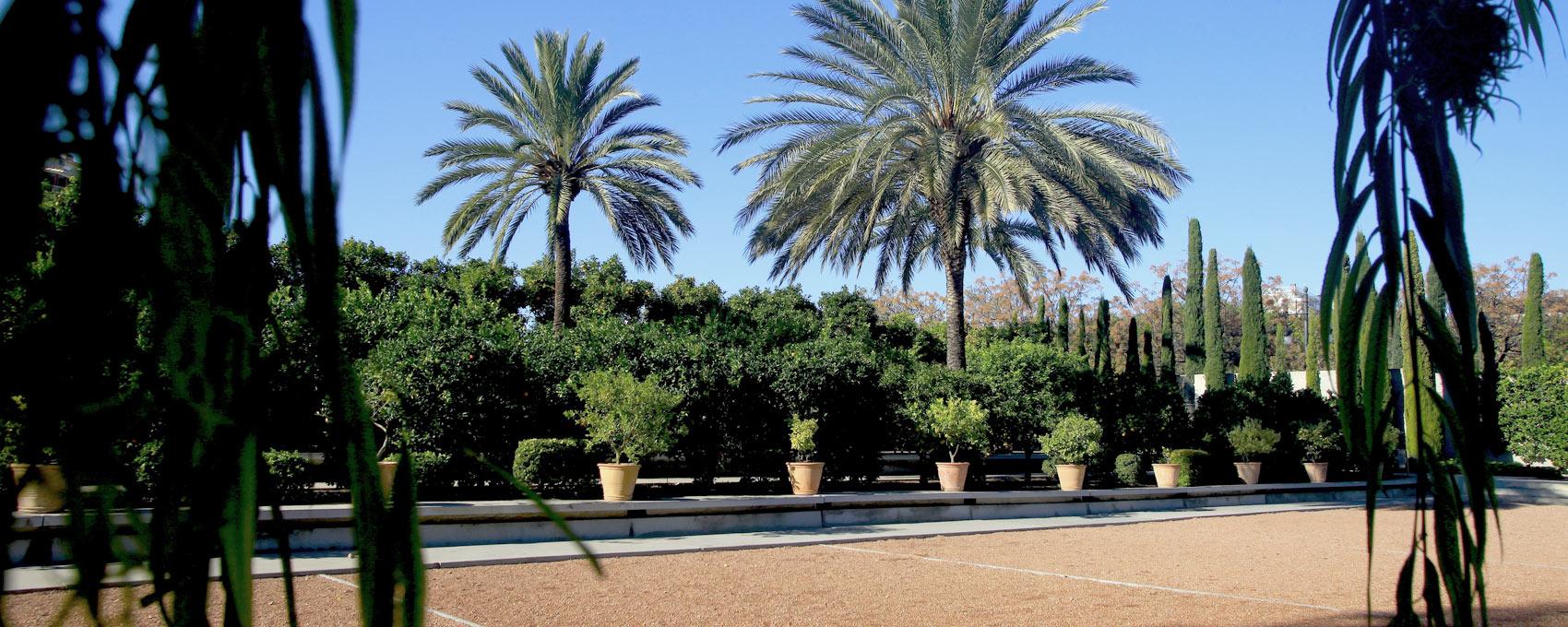 En la part superior del jardí es situa una col•lecció de cítrics composta per més de 50 varietats diferents