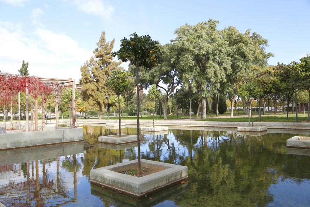 En este original estanque reposan naranjos que parece flotar en medio del agua