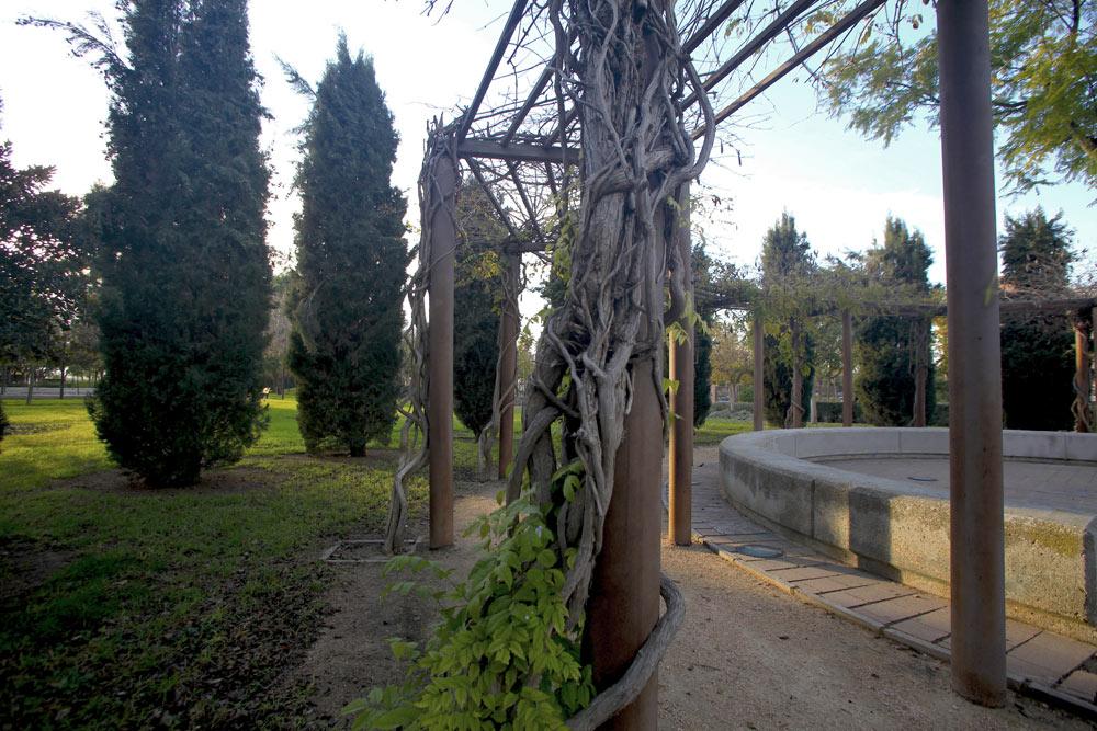 La Plaza de los Cipreses es una pequeña plaza circular rodeada de cipreses. Cerca de esta plaza, un ficus con un desarrollo monumental de sus raíces